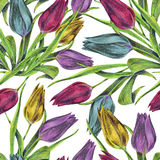 Bouquet flowers, colorful tulip, watercolor, pattern seamless Stock Photo
