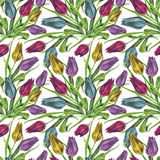 Bouquet flowers, colorful tulip, watercolor, pattern seamless Royalty Free Stock Images