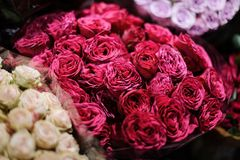 Bouquet of flowers consisting of deep pink peony roses stock images