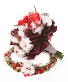 Bouquet of flowers cotton, red berries and red pepper on the bac Royalty Free Stock Photo