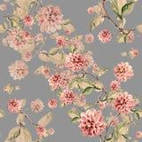 Bouquet flowers dahlia watercolor seamless pattern Stock Image
