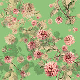 Bouquet flowers dahlia watercolor seamless pattern Royalty Free Stock Image