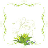 Bouquet of flowers in the decorative frame Stock Image