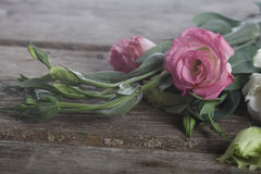 Bouquet of flowers eustoma Royalty Free Stock Images