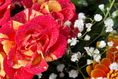 Bouquet of flowers with fresh water drops. A bouquet of flowers and a rose covered in water drops Stock Image