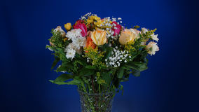 Bouquet of flowers in glass vase on dark blue background Royalty Free Stock Photo