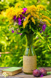A bouquet of flowers of goldenrod, phlox chrysanthemums in a glass vase, ripe plums and old book Stock Image
