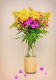A bouquet of flowers of goldenrod, phlox and lilies in a glass bottle on a pink background Royalty Free Stock Images
