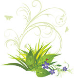 Bouquet of flowers with grass and ornament Stock Photo