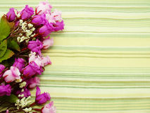 Bouquet Flowers with green stripes Background Royalty Free Stock Photo