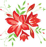 Bouquet  flowers and greenery, vector illustration Stock Image