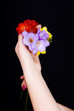 Bouquet of flowers in his hands Royalty Free Stock Image