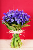Bouquet of flowers iris Stock Image