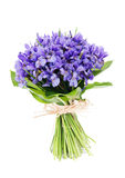 Bouquet of flowers iris Royalty Free Stock Image