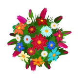 Bouquet of flowers. Royalty Free Stock Images