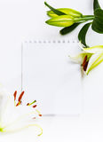 Bouquet of flowers lily empty paper sheet.  Stock Photos