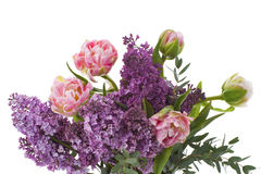 Bouquet of flowers made up of tulips and lilacs. Royalty Free Stock Images
