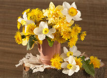 Bouquet of  flowers  narcissus Stock Images