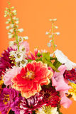 Bouquet flowers on orange. Colorful bouquet flowers on orange background Stock Photos
