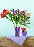 Bouquet of flowers orchid family (Alstroemeria) Royalty Free Stock Photos