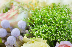 Bouquet of flowers in pastel colors Stock Image
