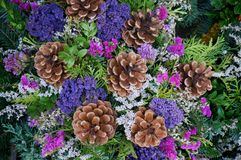 Bouquet. Of flowers and pine cones Royalty Free Stock Photo
