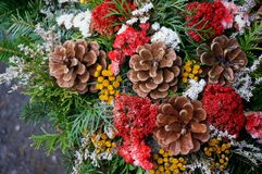 Bouquet. Of flowers and pine cones Stock Photo