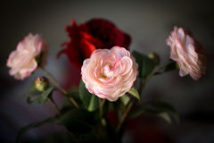 Bouquet of flowers, pink and red fabric roses on a dark background Stock Photography