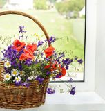 Bouquet of  flowers on a plastic window Stock Images