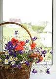 Bouquet of flowers on a plastic window Stock Image