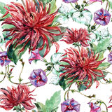 Bouquet flowers, red dahlia, ipomoea, watercolor, pattern seamless Royalty Free Stock Photos