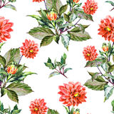 Bouquet flowers, red dahlia, watercolor, pattern seamless Stock Image