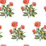 Bouquet flowers, red dahlia, watercolor, pattern seamless Royalty Free Stock Photos
