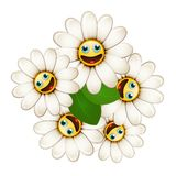 Bouquet of flowers with smiling daisies Royalty Free Stock Image