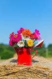Bouquet flowers in summer Stock Images