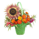 Bouquet of Flowers with a sunflower Stock Photos