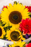 Bouquet of flowers with sunflowers Royalty Free Stock Photo
