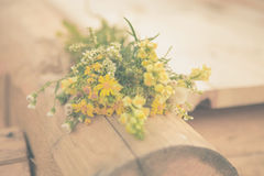 Bouquet. Flowers tree meadow field bouquet yellow warm hot day well the freshness of the grass bouquet Royalty Free Stock Photo