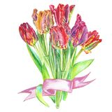 Bouquet of flowers tulips painted in watercolor bandaged with a ribbon Stock Photo