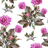 Bouquet flowers, violet dahlia, watercolor, pattern seamless Royalty Free Stock Photography