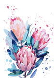 A bouquet of flowers. A bouquet of watercolors from Proteus, splashes, stains stock illustration
