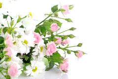 Bouquet flowers on white background Stock Photography