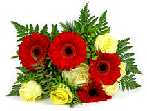 A bouquet of flowers on a white background. Royalty Free Stock Images