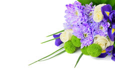 Bouquet of flowers on a white background. Stock Image