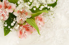 Bouquet of flowers on white lace Royalty Free Stock Image