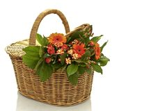 Bouquet of flowers in a wicker basket Stock Photos