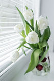 Bouquet of flowers on the window sill Stock Photo