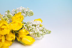 Free Bouquet For Easter Stock Images - 17715534