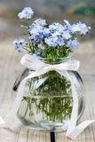 Bouquet of forget-me-not flowers in glass vase Stock Images