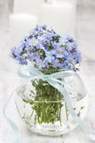 Bouquet of forget-me-not flowers Royalty Free Stock Photos